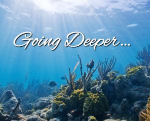 Going-Deeper-21